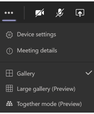 A screenshot of video viewing options on Microsoft Teams