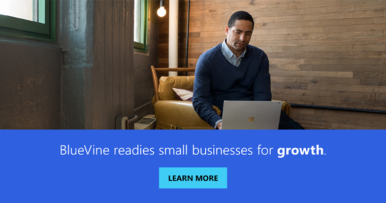 BlueVine readies small businesses for growth: learn more