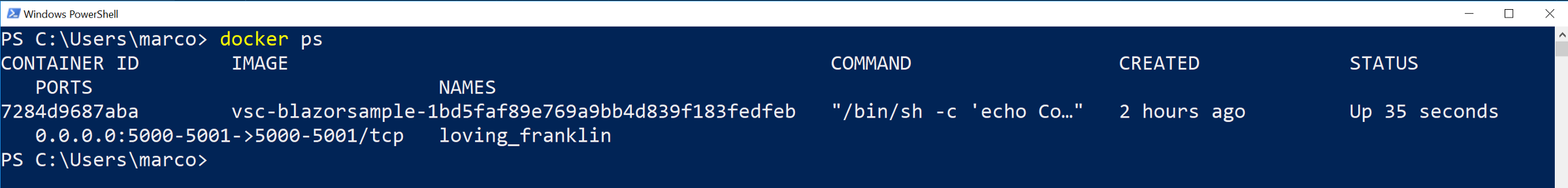 A'docker ps'command showing the running container we are currently using.