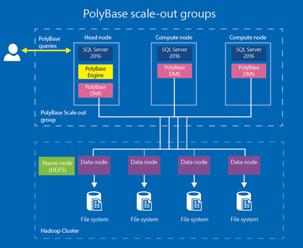 Polybase scale out groups