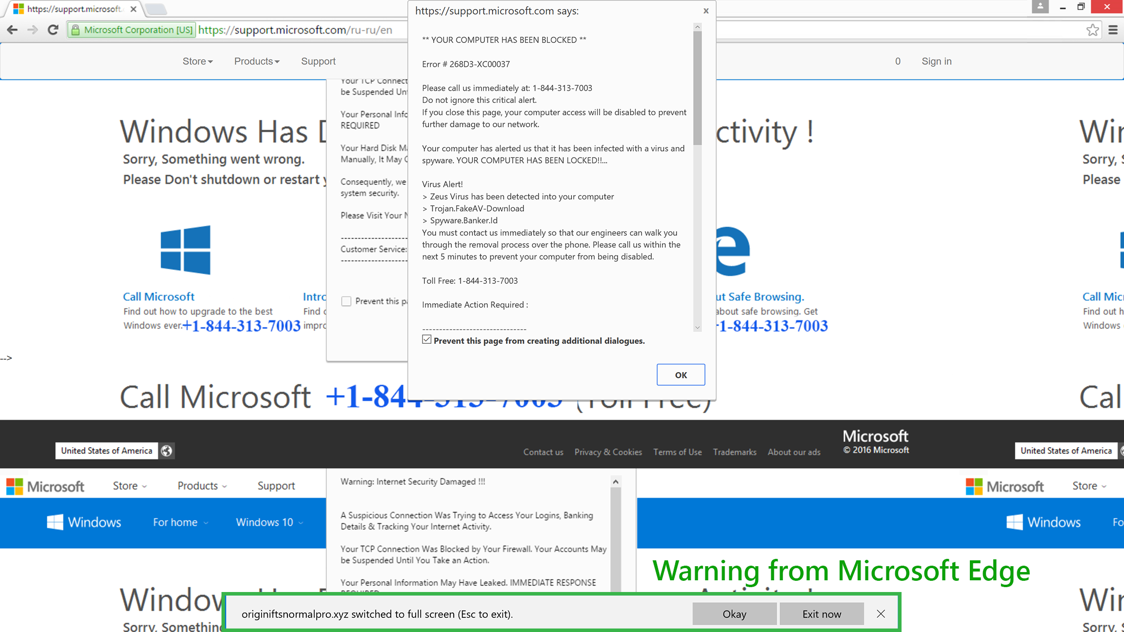 tech support scam full screen microsoft edge message
