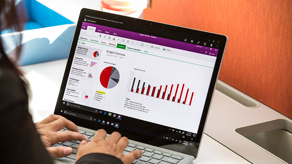 Laptop with budget overview dashboard