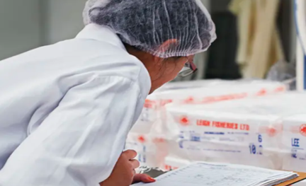 A worker wearing a protective hairnet checks a shipment of goods.